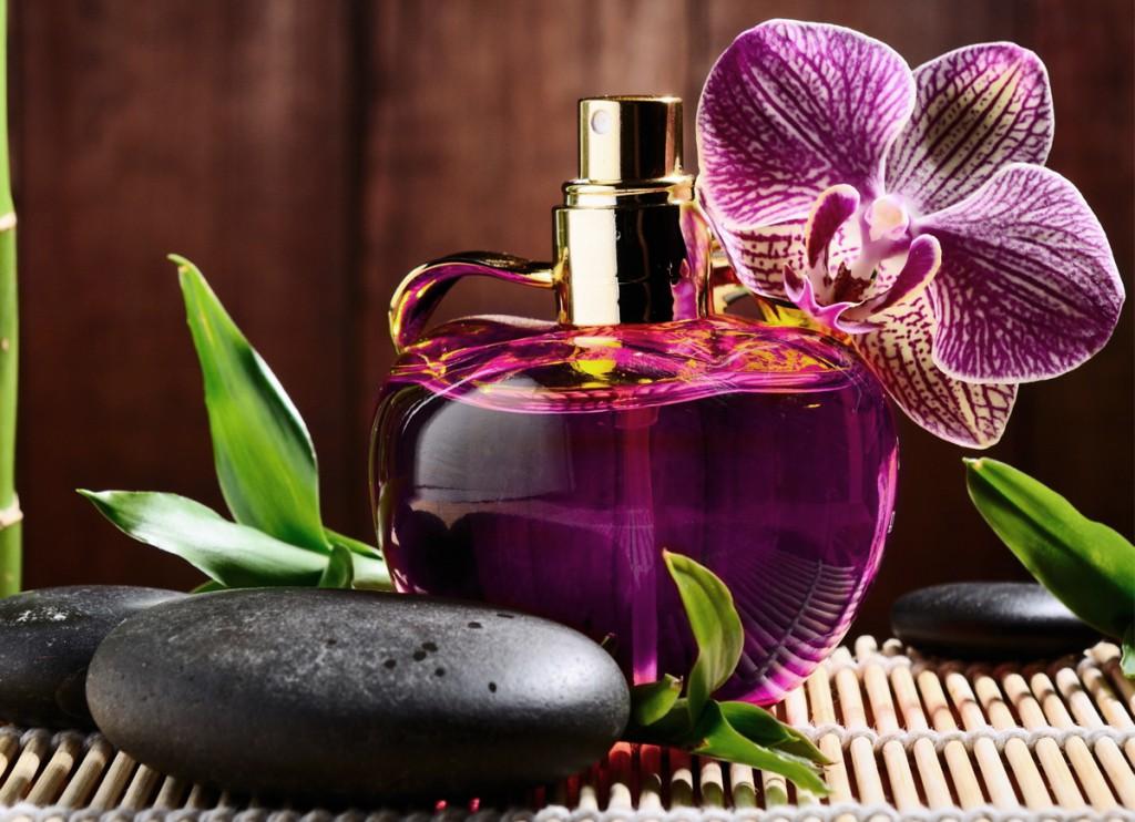 melhor perfume importado feminino fragrancias